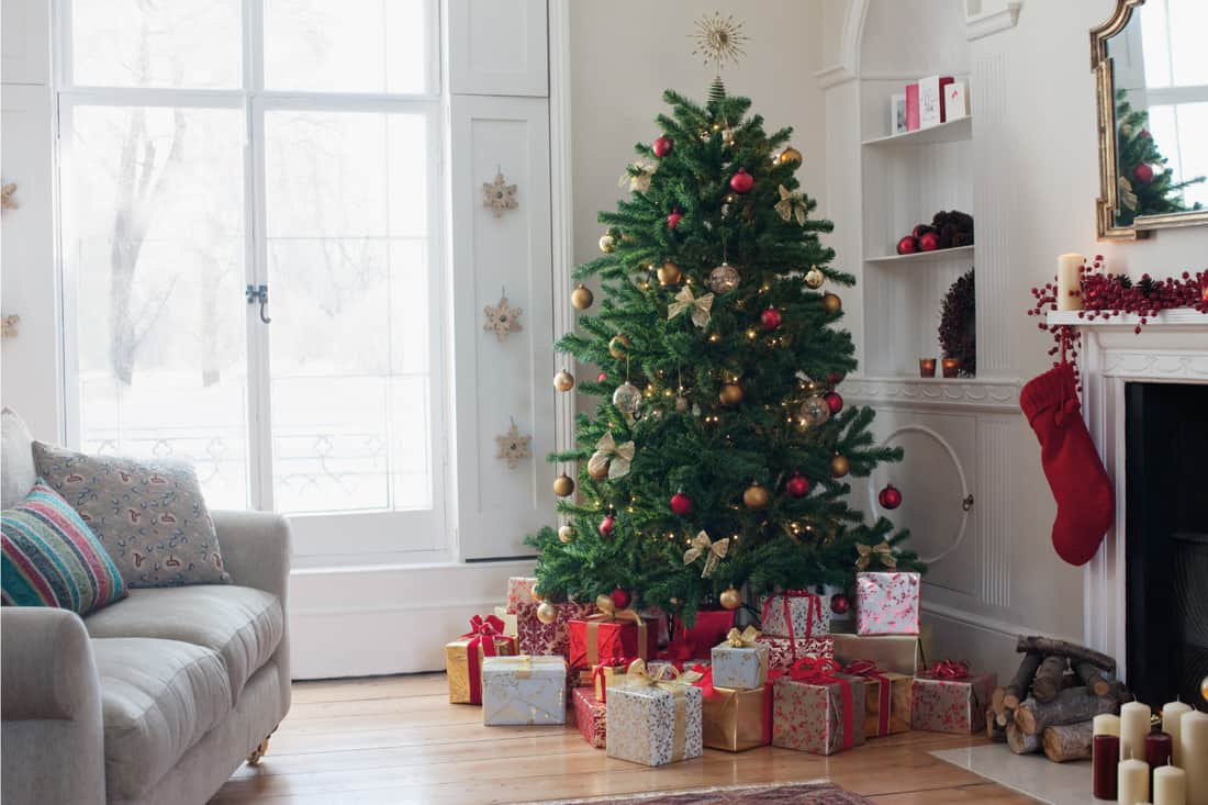 Christmas tree surrounded with gifts in a living room corner