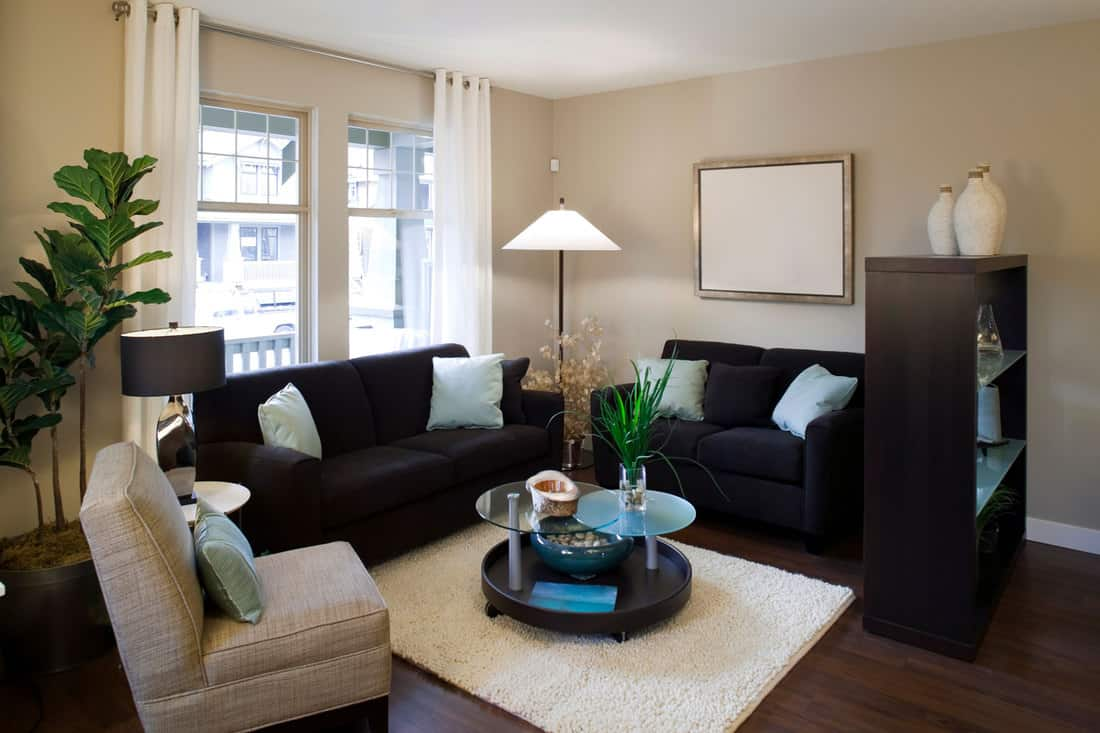showcase interior furniture with loveseat and sofa