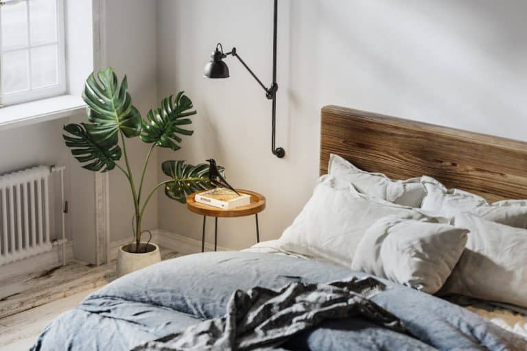 Domestic bedroom with bed, heater, potted plant and side table, What Is The Difference Between A Duvet And A Comforter?