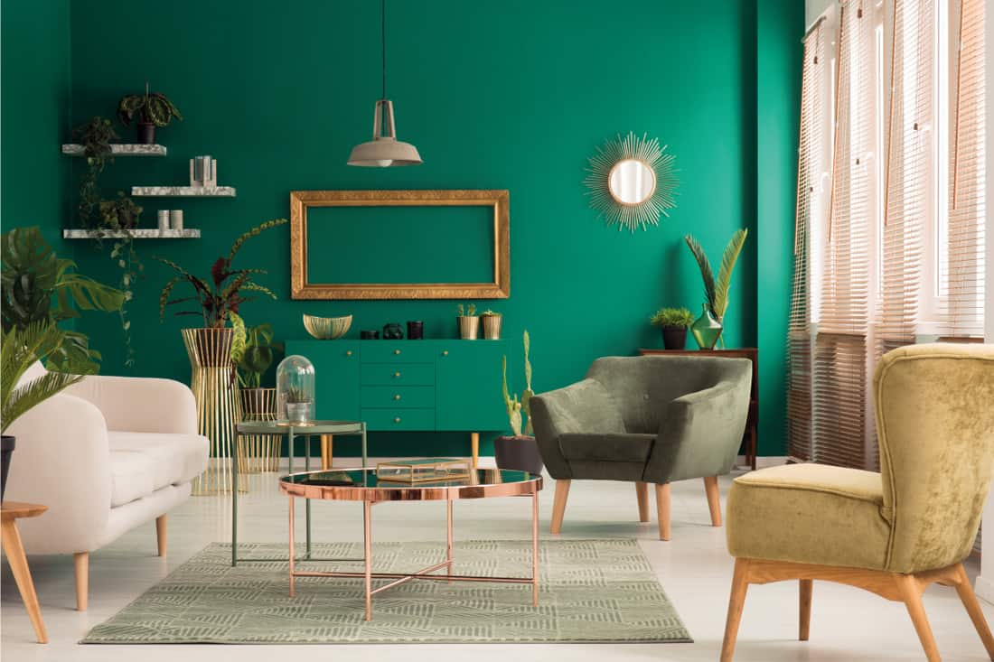 Green and gold concept living room with sage green carpet