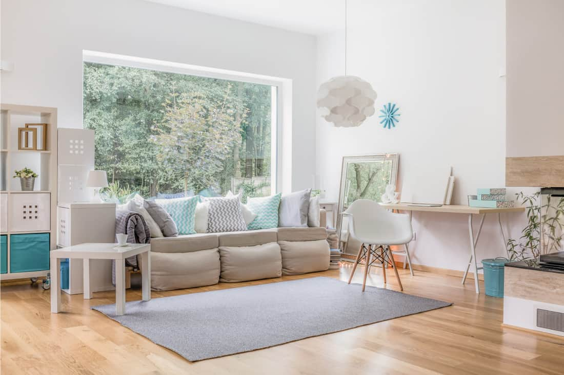 Grey rug in a living room with a big window and a cozy sofa