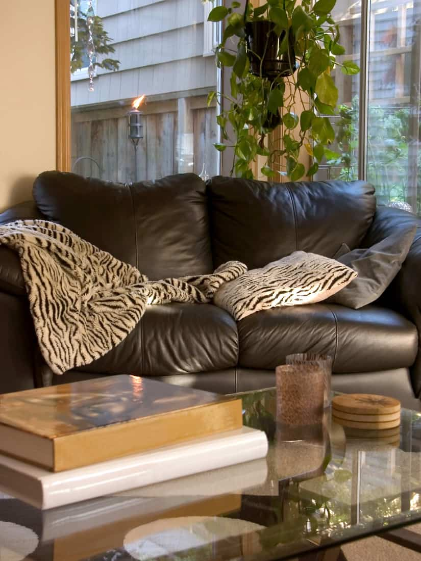 leather couch with throw pillow