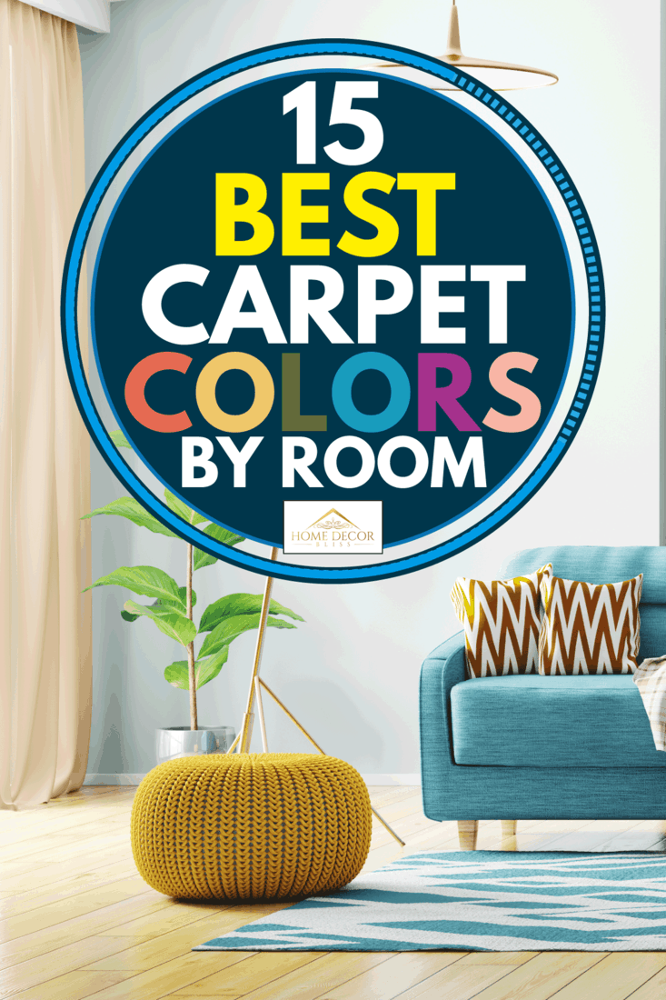 Light blue carpet in a bright and cozy living room, 15 Best Carpet Colors By Room