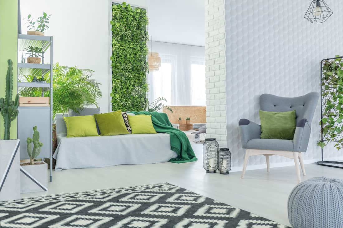 Modern apartment with wall of green leaves, gray and green pillows on a gray sofa