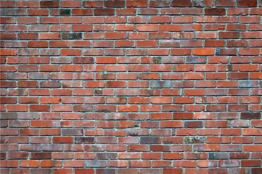Rd brick wall
