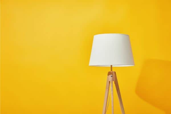 Read more about the article What Type Of Floor Lamp Gives The Most Light?