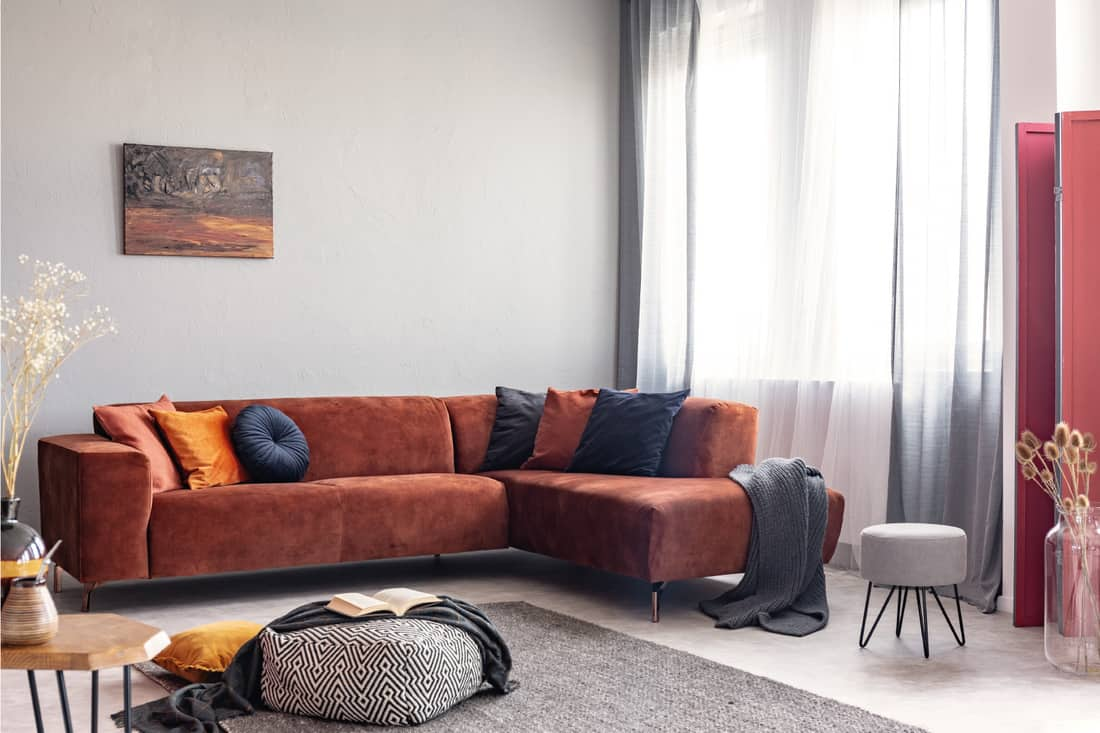 Autumn colored interior of classy living room in modern apartment