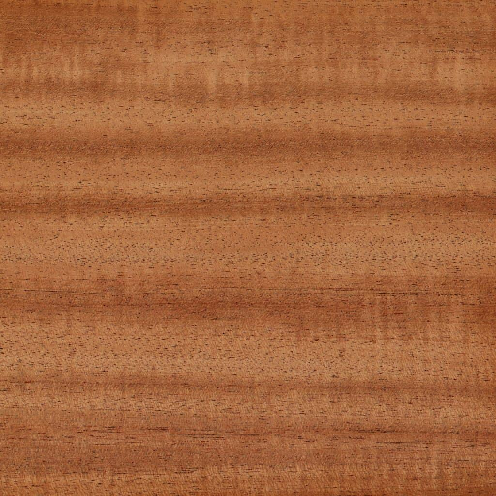 A detailed photo of a ribbon striped African Mahogany