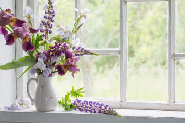 What To Put On Kitchen Windowsill [9 Suggestions]