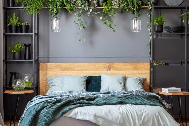 A green blanket and gray pillows on wooden bed in floral bedroom interior with plants, 13 Amazing Wall Decor Ideas For Bedroom