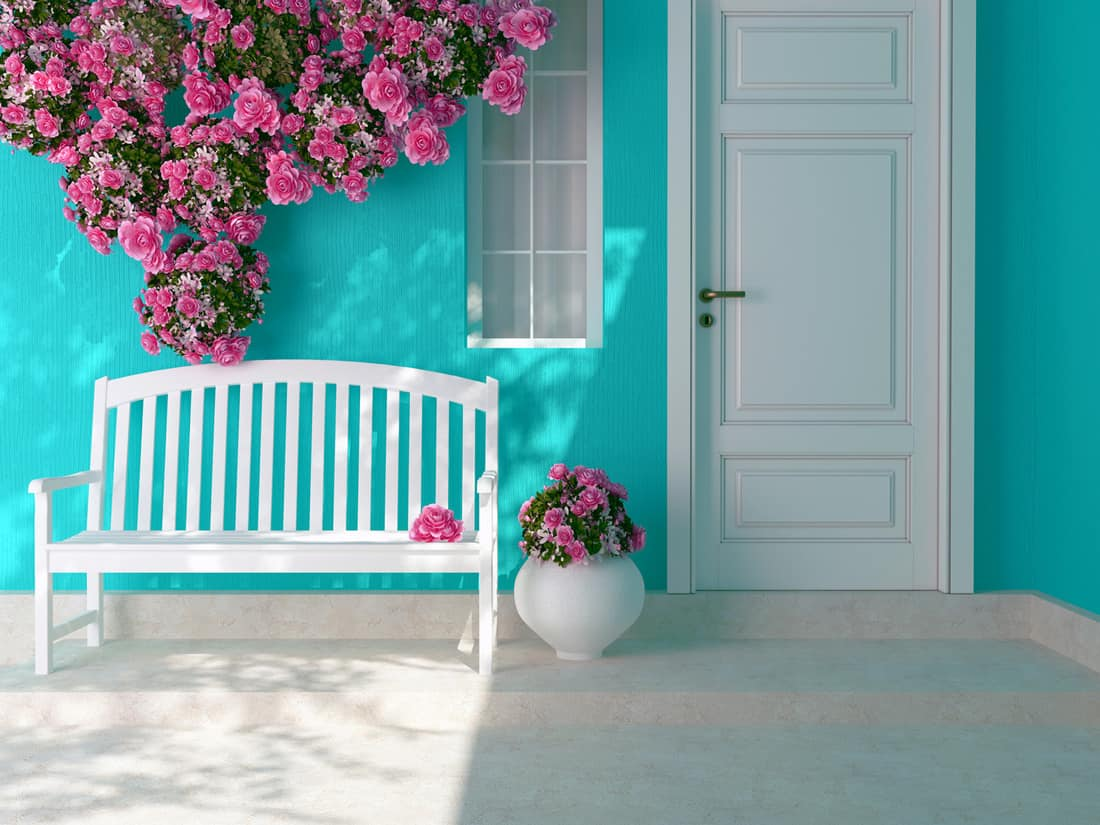 Bright and floral Entrance of a house