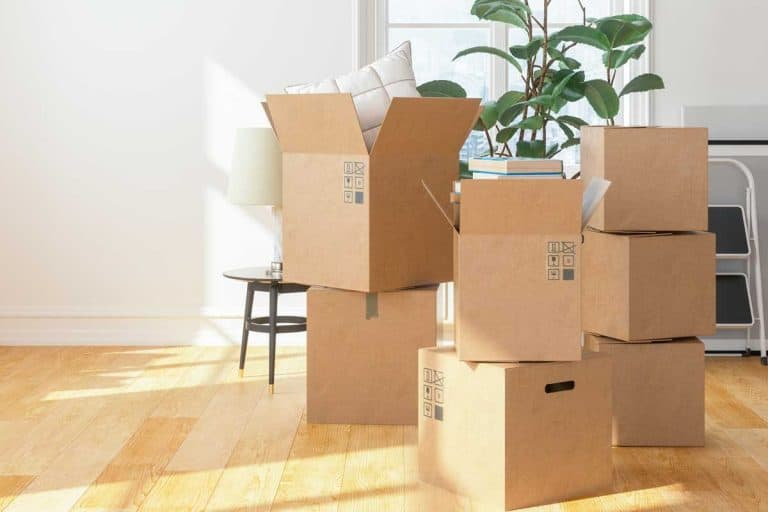 Cardboard boxes at new apartment, Can You Move Furniture In Before A Certificate Of Occupancy Is Issued?