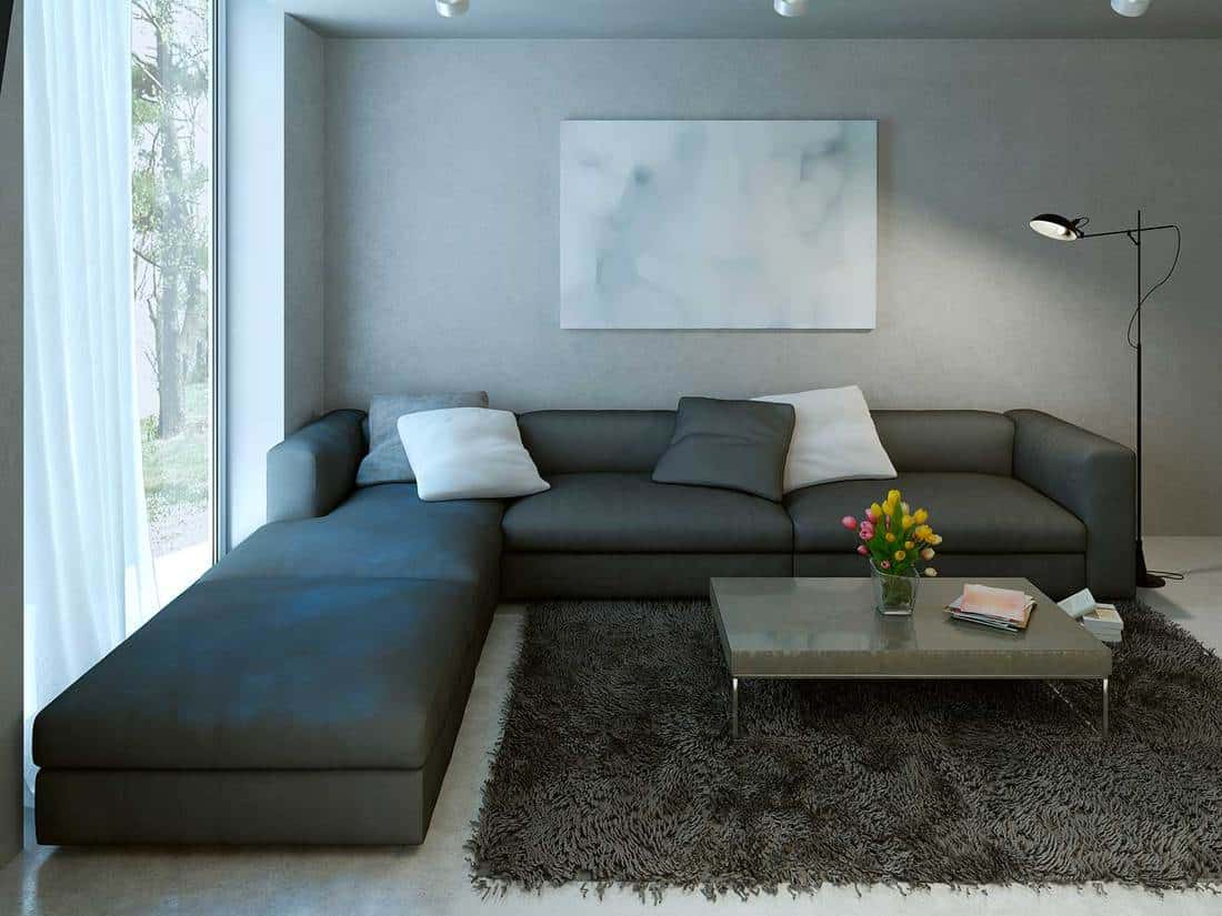 Contemporary living room design with L-shaped sofa and carpet rug on floor