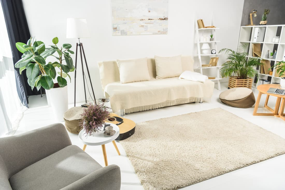 Cozy plant inspired living room with gray accent chair