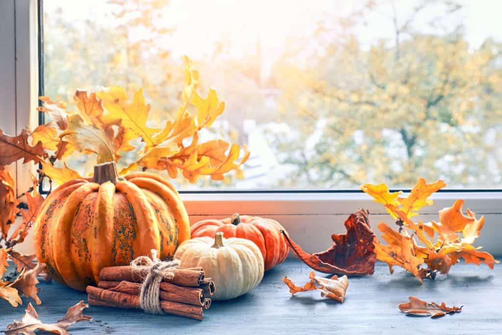 Decorative pumpkins and leaves on a windowsill