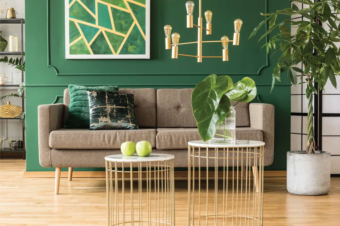 Elegant green and gold living room with comfortable brown sofa, coffee tables and golden chandelier. real greenery in a green room