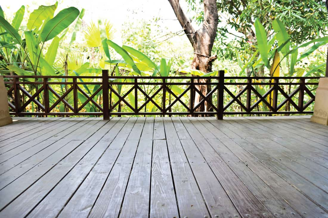 Empty wooden deck with criss cross railing. green plant in the background
