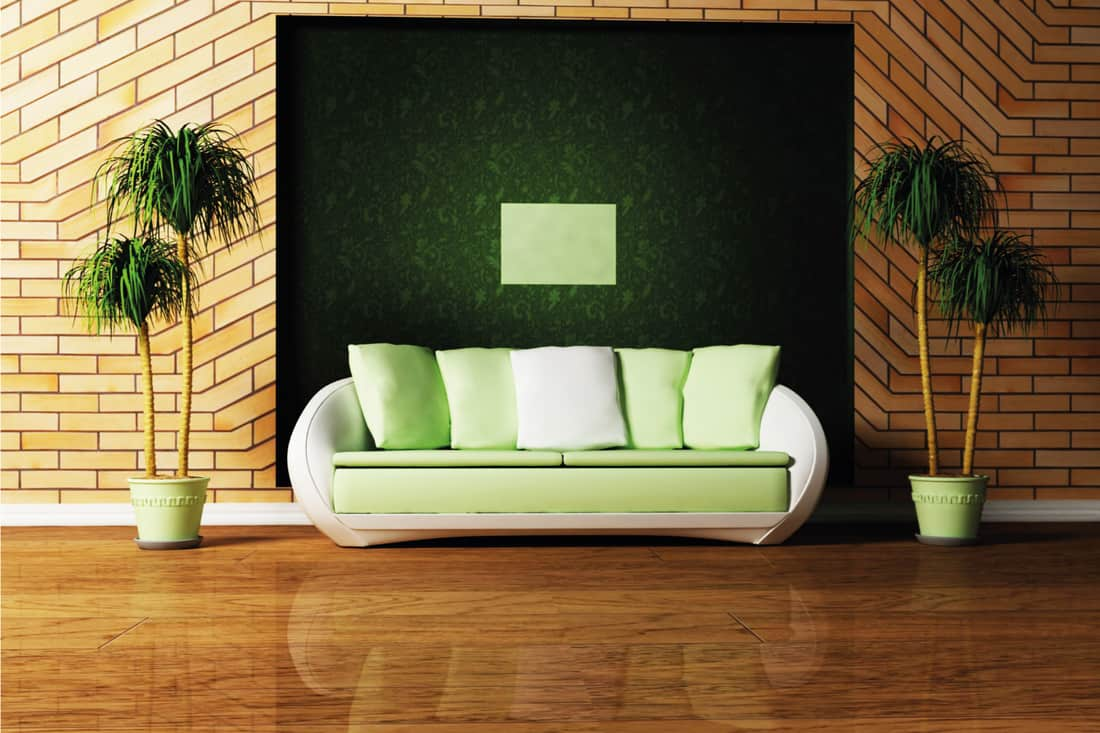Green accent wall with a green couch