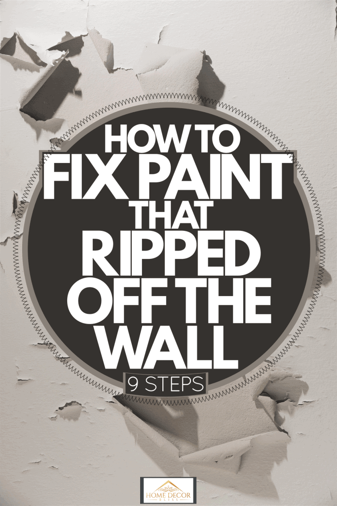 Paint peeling off a wall due to slowly degrading paint, How To Fix Paint That Ripped Off The Wall [9 Steps], How To Fix Paint That Ripped Off The Wall [9 Steps]