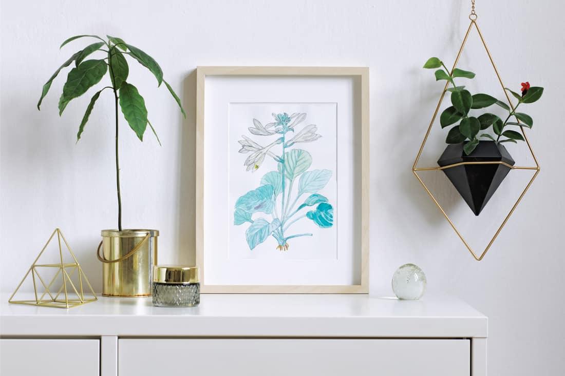 Interior floral poster with vertical wooden frame. hanging plants inside a living room