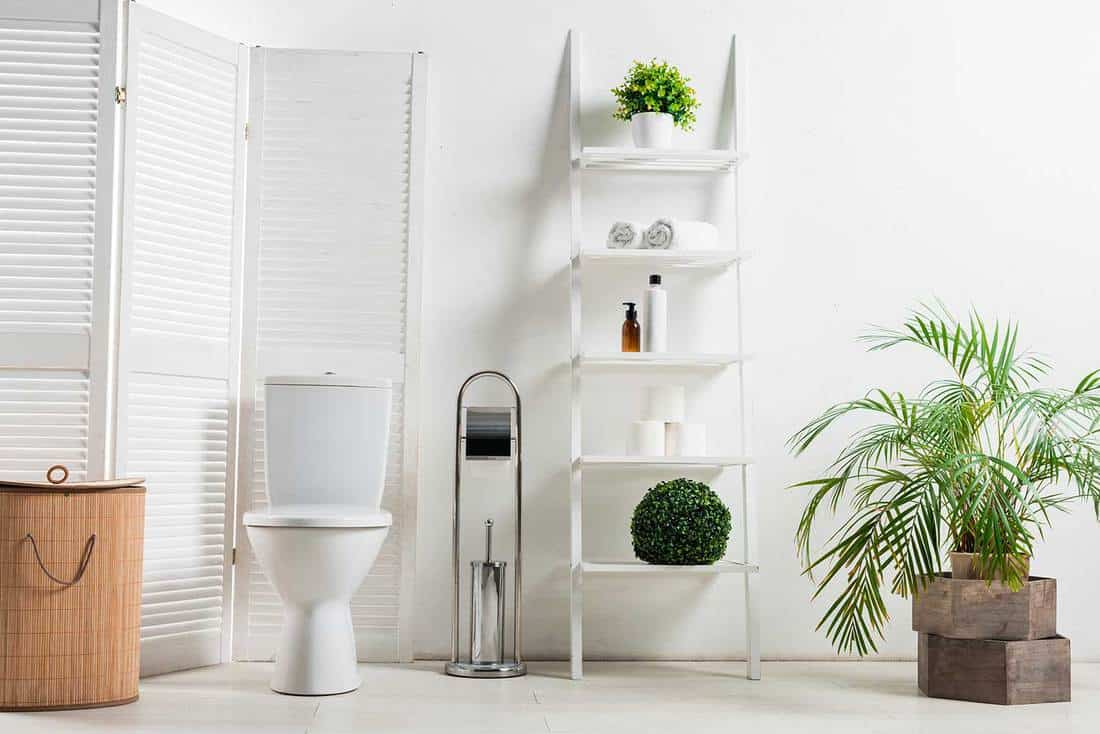 Interior of white modern bathroom with toilet bowl near folding screen, laundry basket, rack and plants