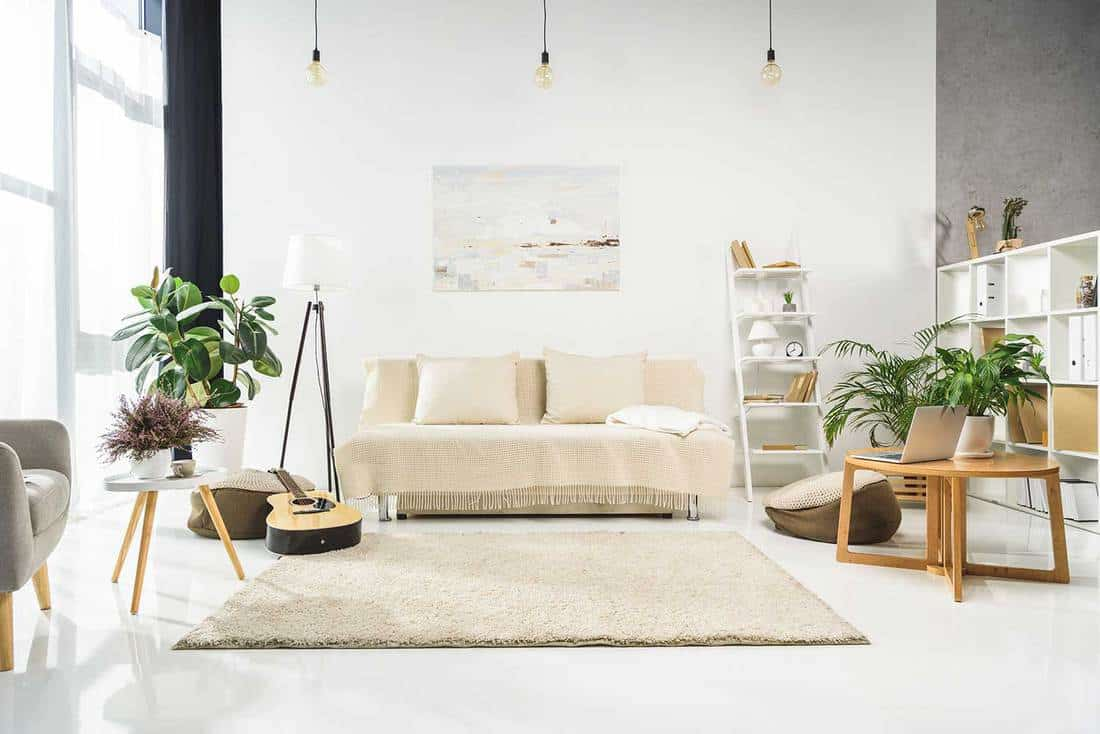 Living room interior with sofa, laptop on table, carpet on tiled floor and house plants