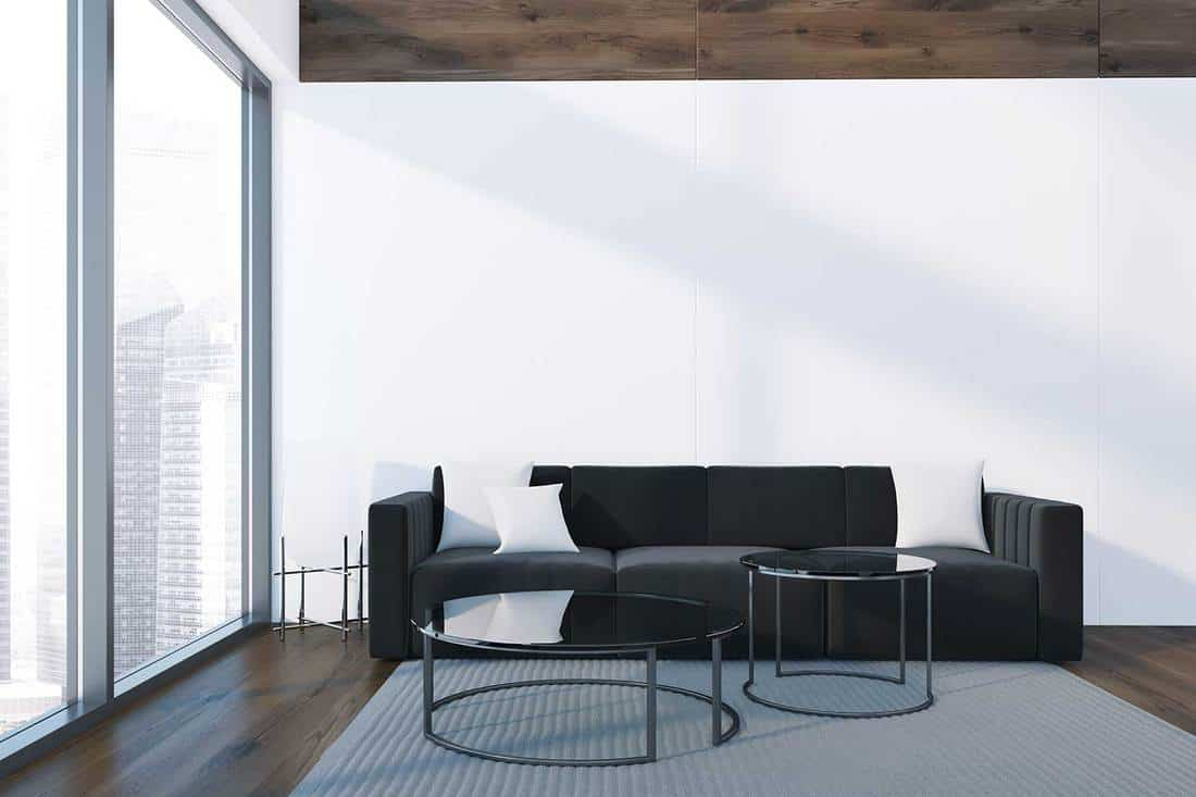 Loft black and white living room interior with gray carpet on wooden floor