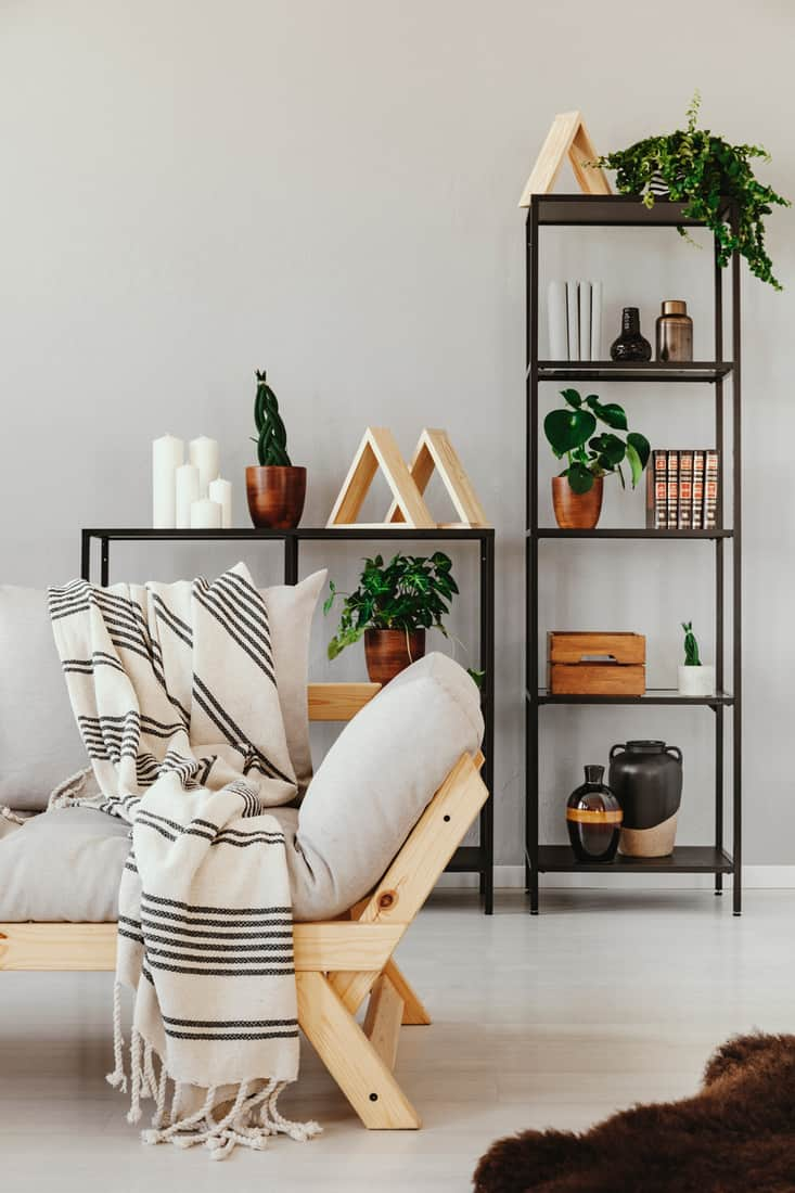 Metal shelf with plants in pots, books and accessories behind comfortable sofa with striped blanket, real photo with copy space on the empty beige wall