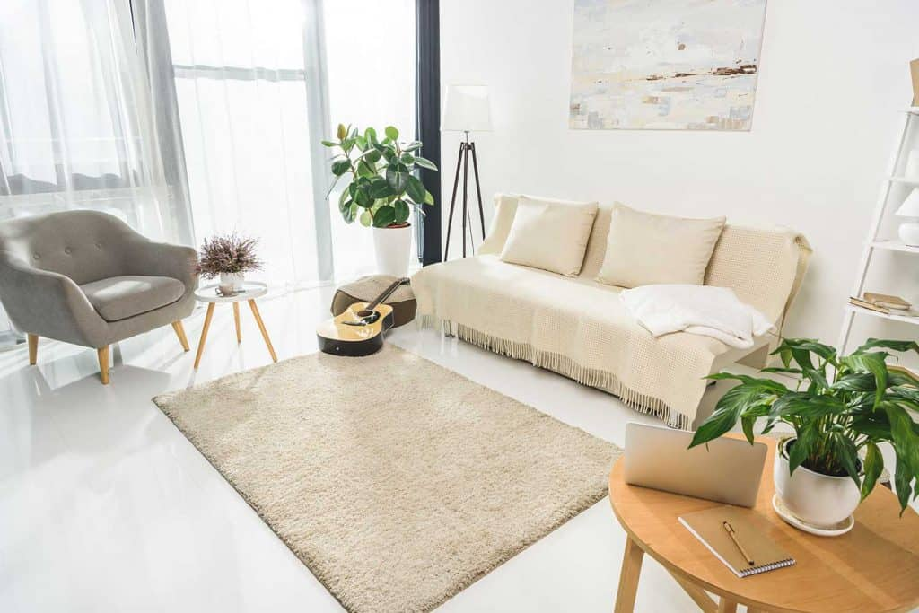 Minimalistic living room interior with sofa and carpet rug