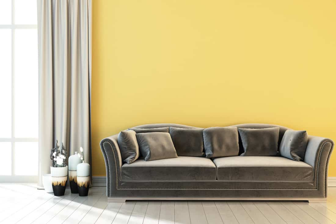 Modern bright interior with yellow wall and gray sofa, curtains, vases