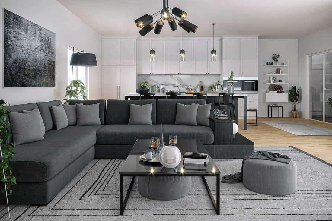 Modern living room and kitchen area with carpet rug on wooden floor