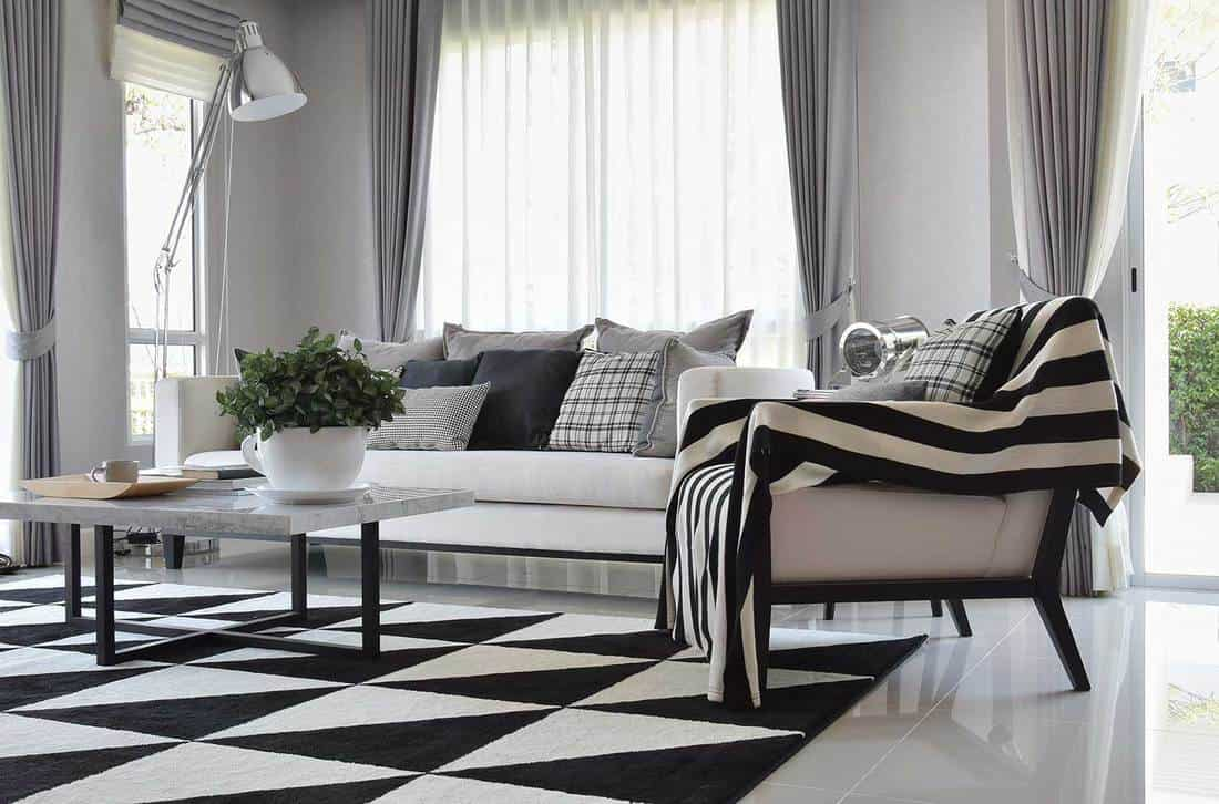 Modern living room interior with black and white checkered pattern pillows and carpet