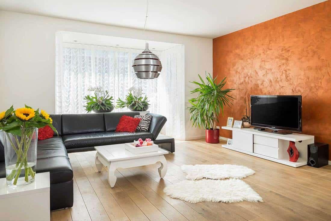 Modern living room interior with corner sofa and hardwood floor