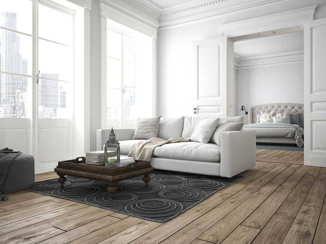 Modern living room with white sofa, carpet on hardwood floor and view of the bedroom