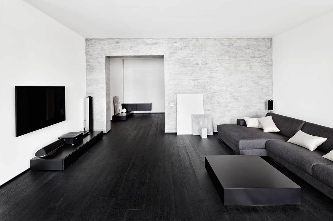 Modern minimalism style living room interior in black and white tones with cozy sofa and hardwood floors