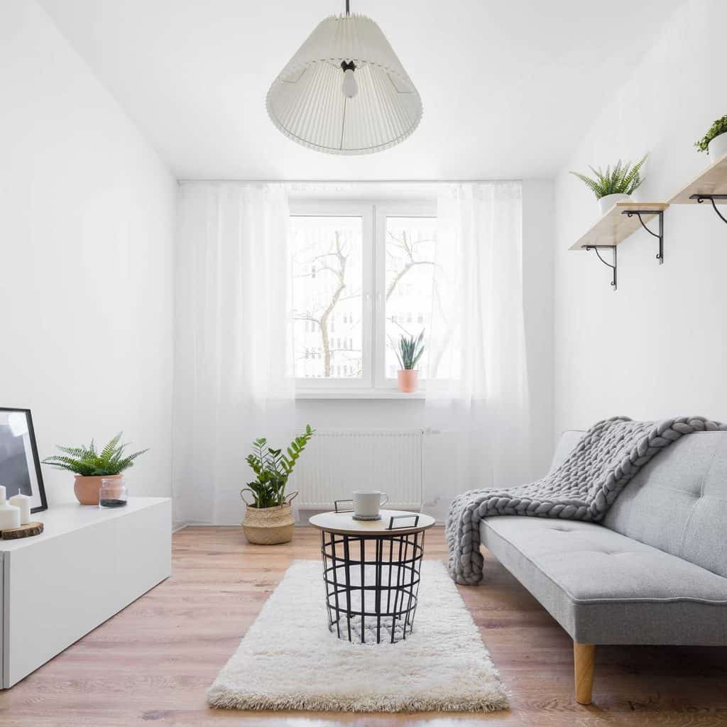 Narrow and stylish living room with furniture and decoration in Scandinavian style