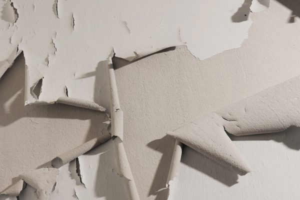 How To Fix Paint That Ripped Off The Wall [9 Steps]