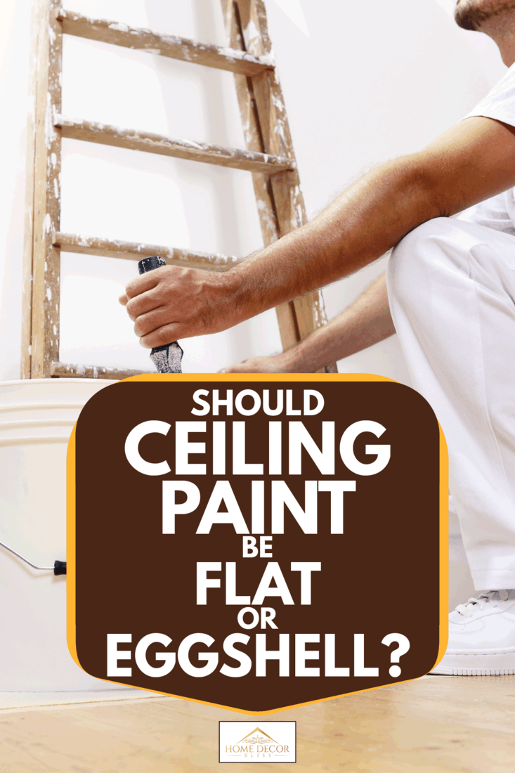 Painter man at work with a roller, bucket, and ladder. Should Ceiling Paint Be Flat Or Eggshell