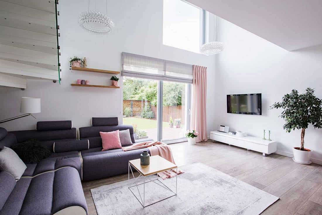 Plant next to television in white living room interior with window and corner couch