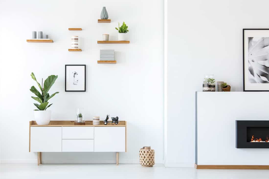 Plant on wooden white cupboard in apartment interior with posters and fireplace. wooden shelves in a plain white wall