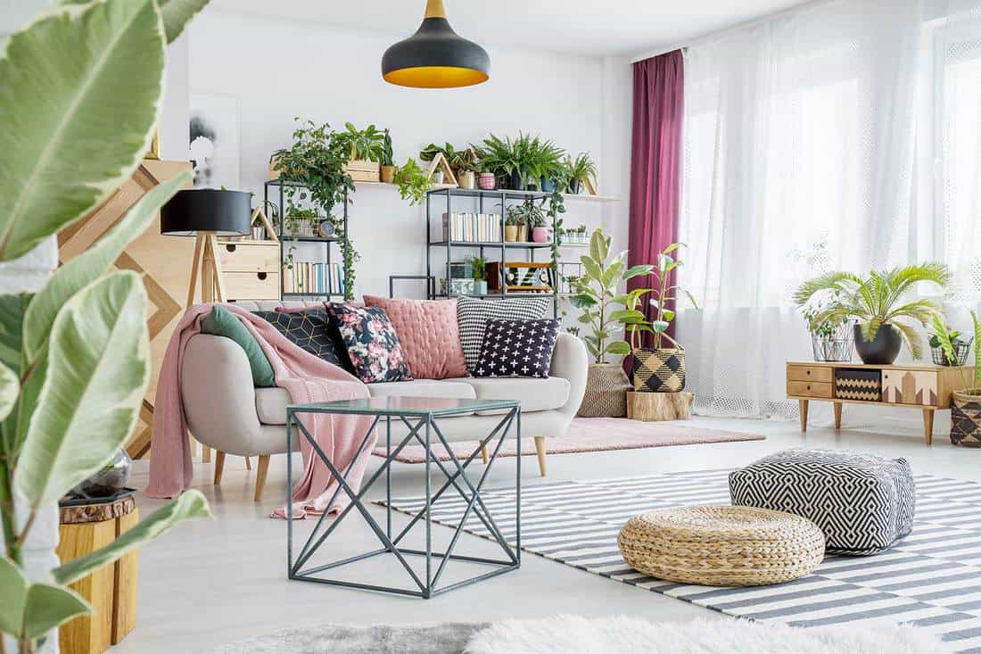 Poufs on striped carpet in spacious living room interior with plants and table next to sofa with pillows