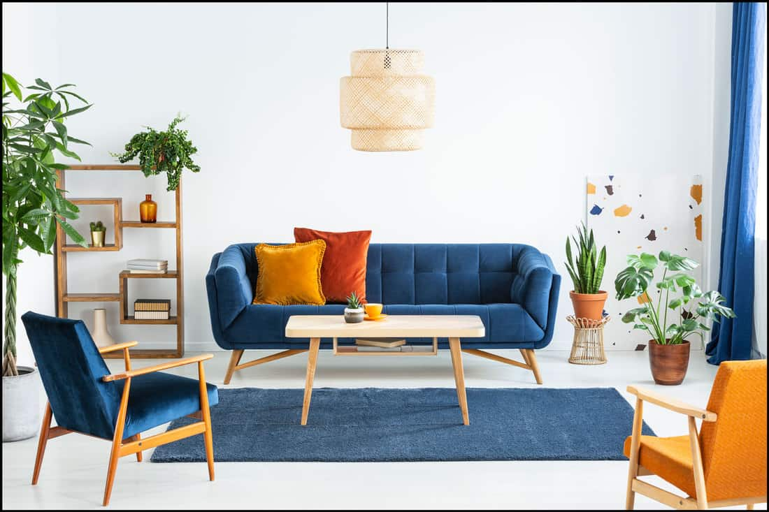 Retro armchairs with wooden frame and colorful pillows on a navy blue sofa in a vibrant living room interior with green plants, What Color Chairs With Blue Sofa?