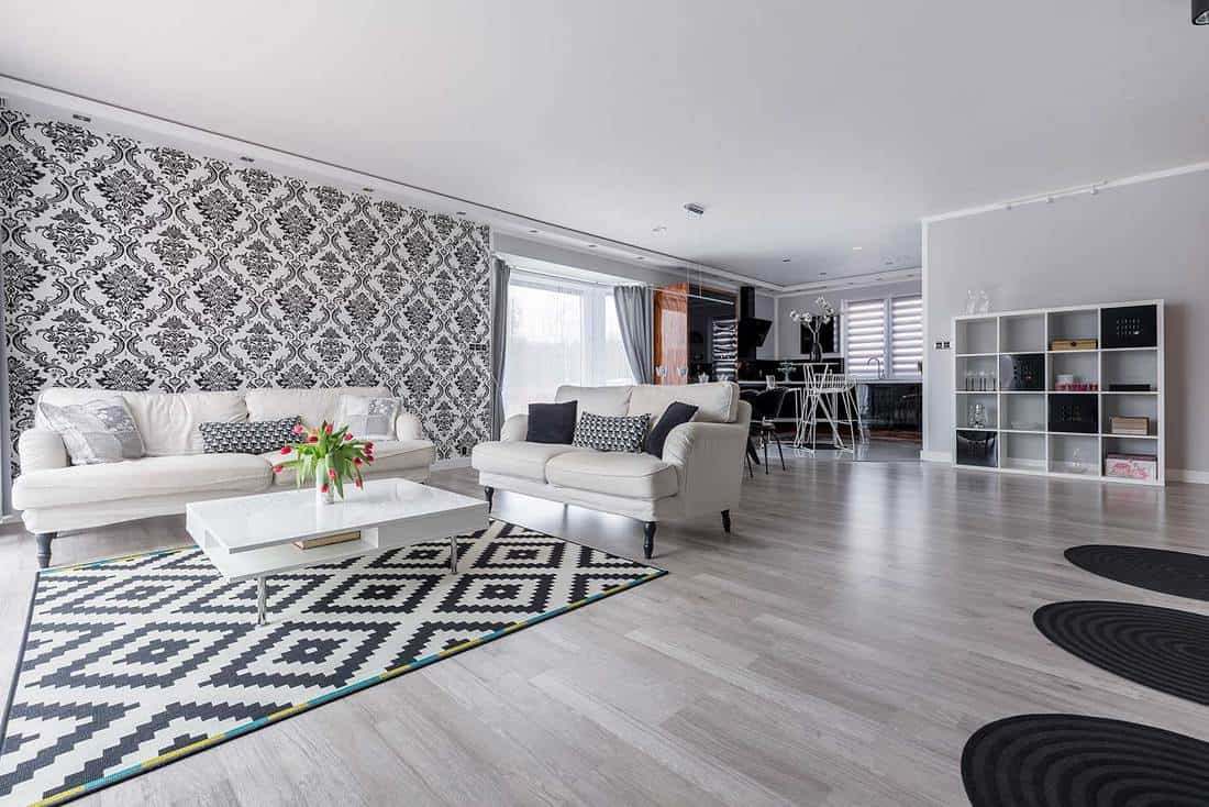 Retro black and white living room in apartment