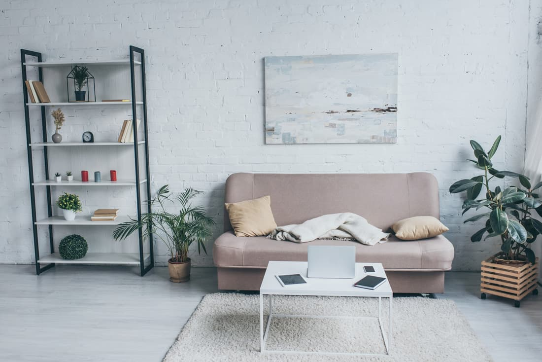 Spacious living room with sofa, rack, plants and large painting on the wall