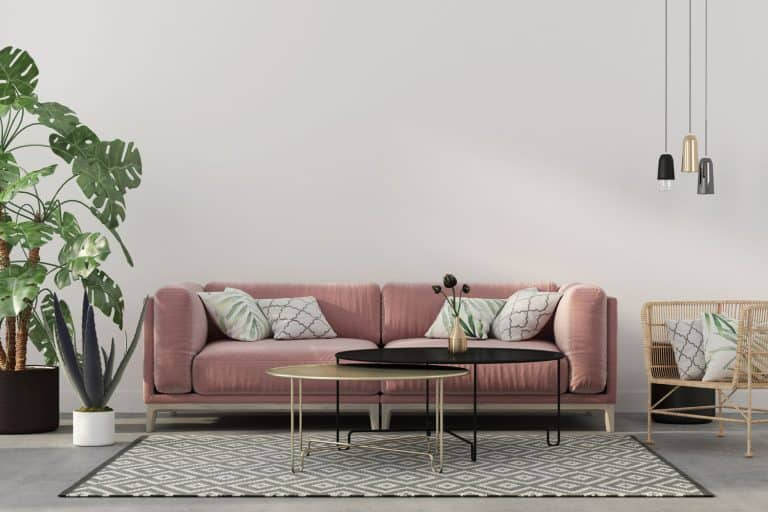Stylish living room interior in pink with a concrete floor, velvet sofa, wicker chair, golden table, chandeliers and tropical plants in grey floors, What Color Couch Goes With Grey Floors? [A Complete Guide]