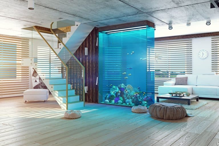 The modern loft interior with aquarium, How To Tell If Glass Is Tempered