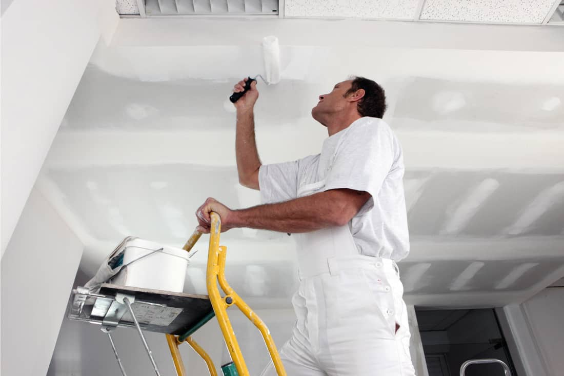 Tradesman painting a ceiling on top of a ladder and using a paint roller