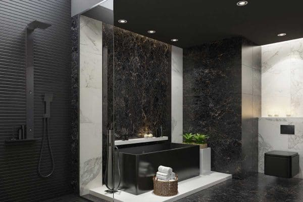 Read more about the article Black Bathroom Fixtures Advantages And Disadvantages