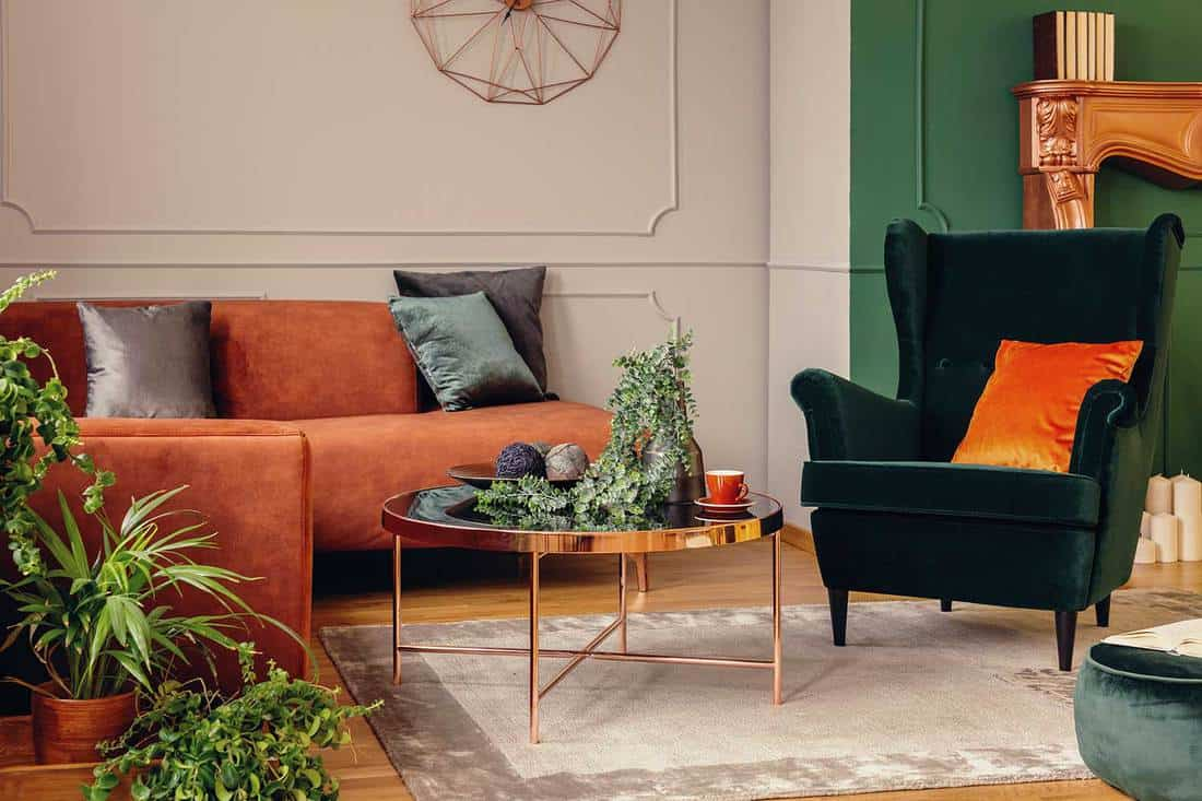 Urban jungle in beautiful living room with gray, orange and green interior
