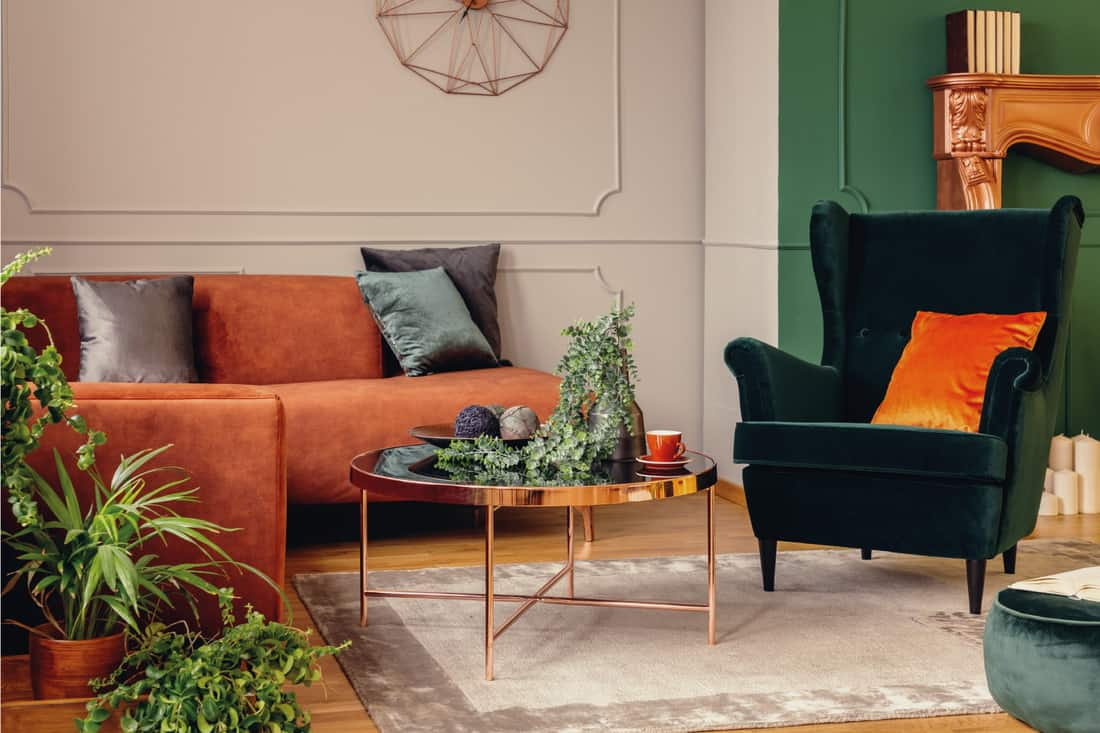 Urban jungle in beautiful living room with grey, orange and green chair